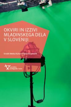 Naslovnica za Okviri in izzivi mladinskega dela v Sloveniji
